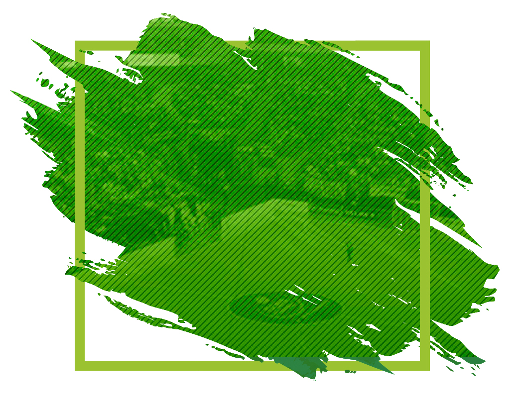 Equipo Proneo Sports