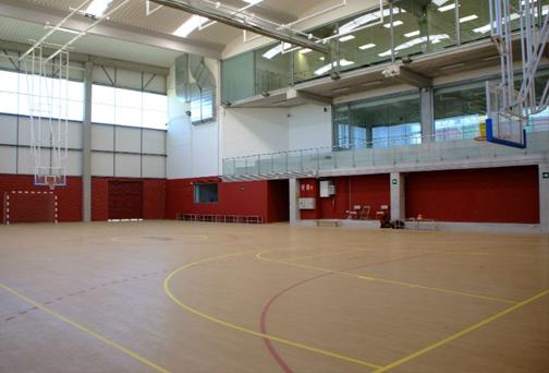 Pista Futsal - Proneo Sports